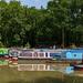 Ashby Canal by peadar