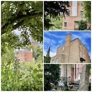 6th Jul 2021 - The Spite House
