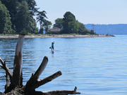 11th Jul 2021 - Lone Paddle Boarder