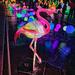 Lighted flamingo.