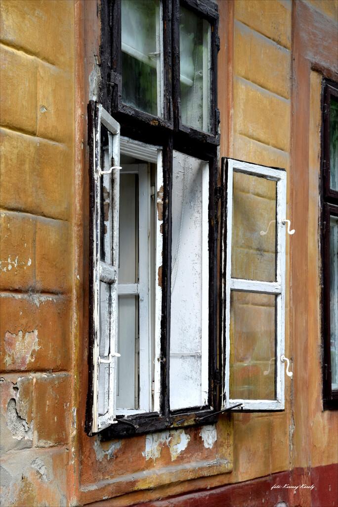 A window that saw a lot! by kork