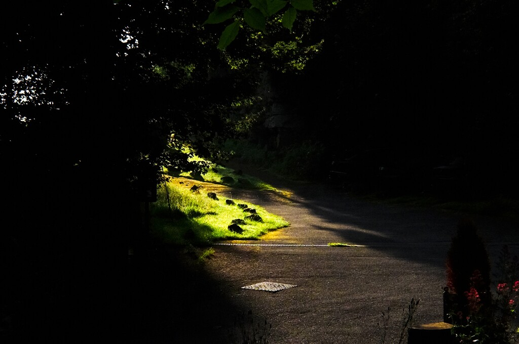 Morning sunlight creeps into the darkness by allsop