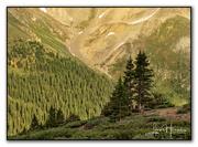 10th Jul 2021 - Loveland Pass II