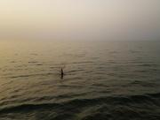 8th Jul 2021 - Sunset Fisherman
