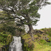 Waitangi Falls