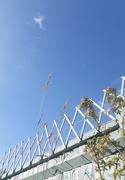 14th Jul 2021 - Cloud and  blue  sky appreciation