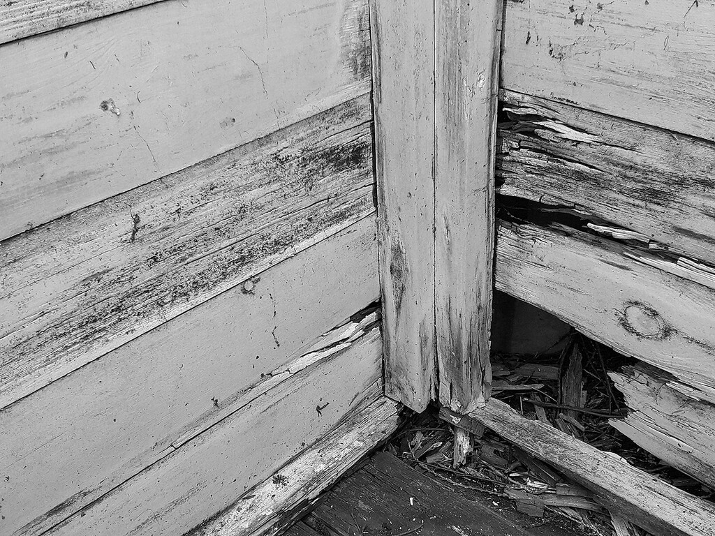 Neglected corner by pistonbroke