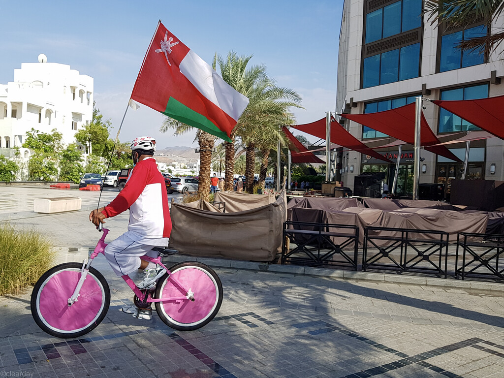 Mr Oman Flag by clearday