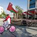 Mr Oman Flag
