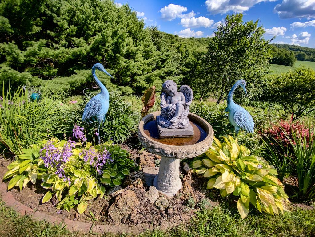The garden by jeffjones