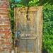 Knock!  by framelight_byasli