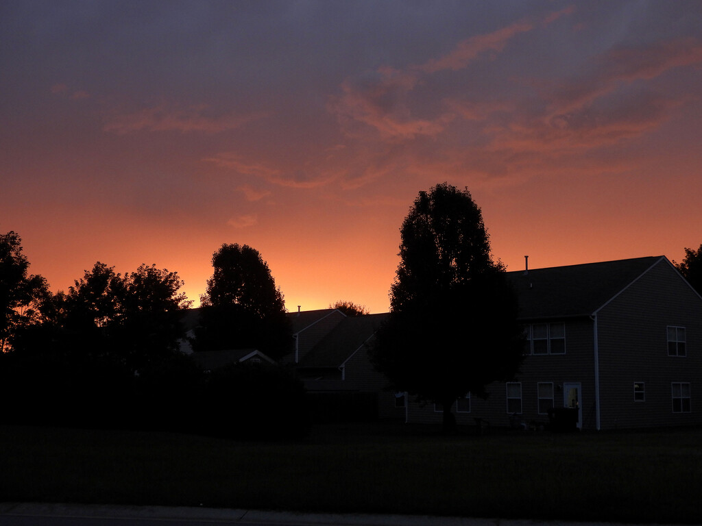 Sunset over houses by homeschoolmom