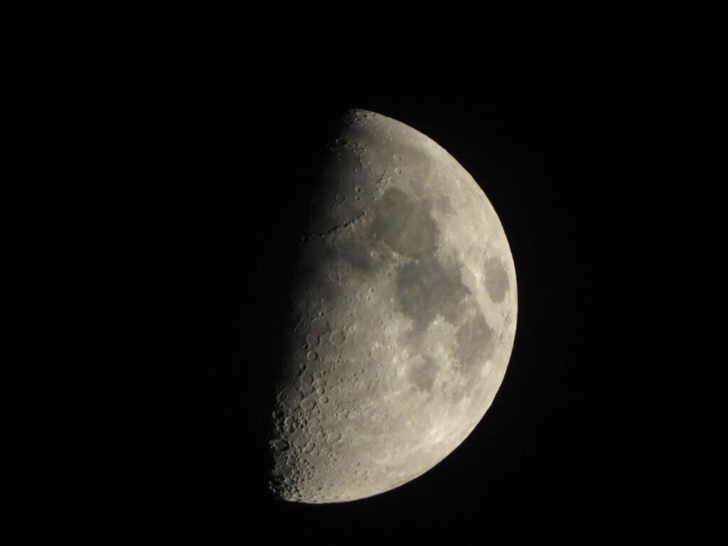 Half Moon  by homeschoolmom