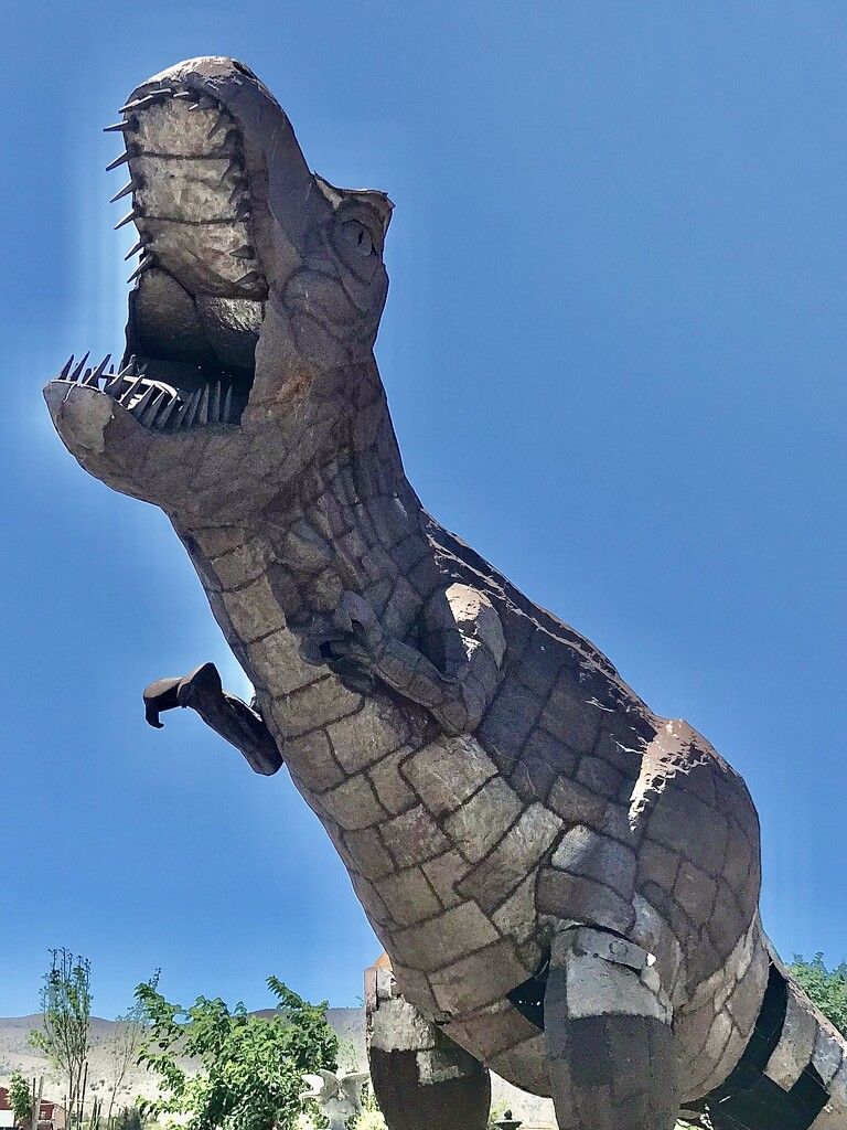 Rex by jnadonza