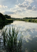 19th Jul 2021 - Early evening on the Great Ouse