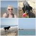 A Beach Bum & Her Dog