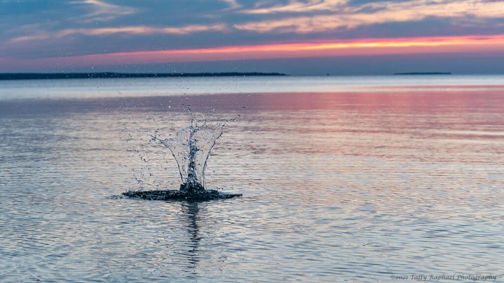 Creature of Lake Michigan by taffy
