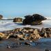 Rocky Shores by yorkshirekiwi