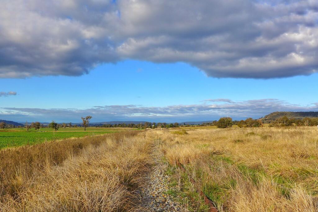 Overgrown tracks by leggzy