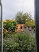 20th Jul 2021 - Watching the rain