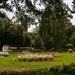 Royal Leamington Spa