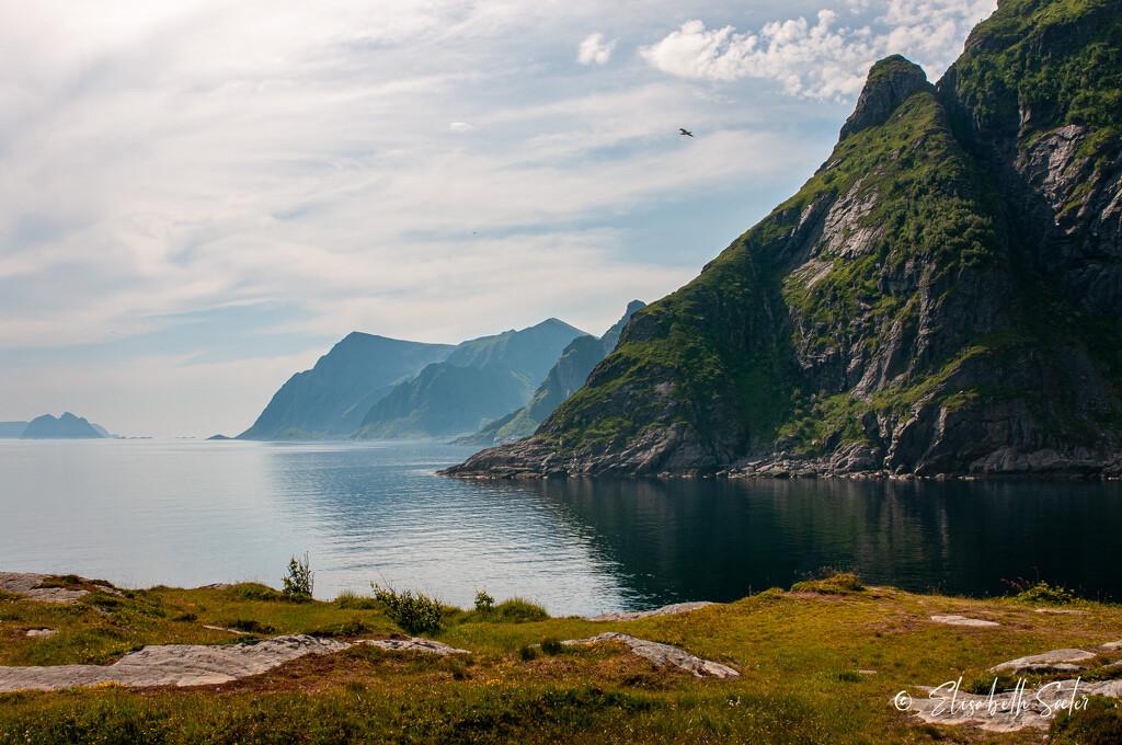Å in Lofoten by elisasaeter
