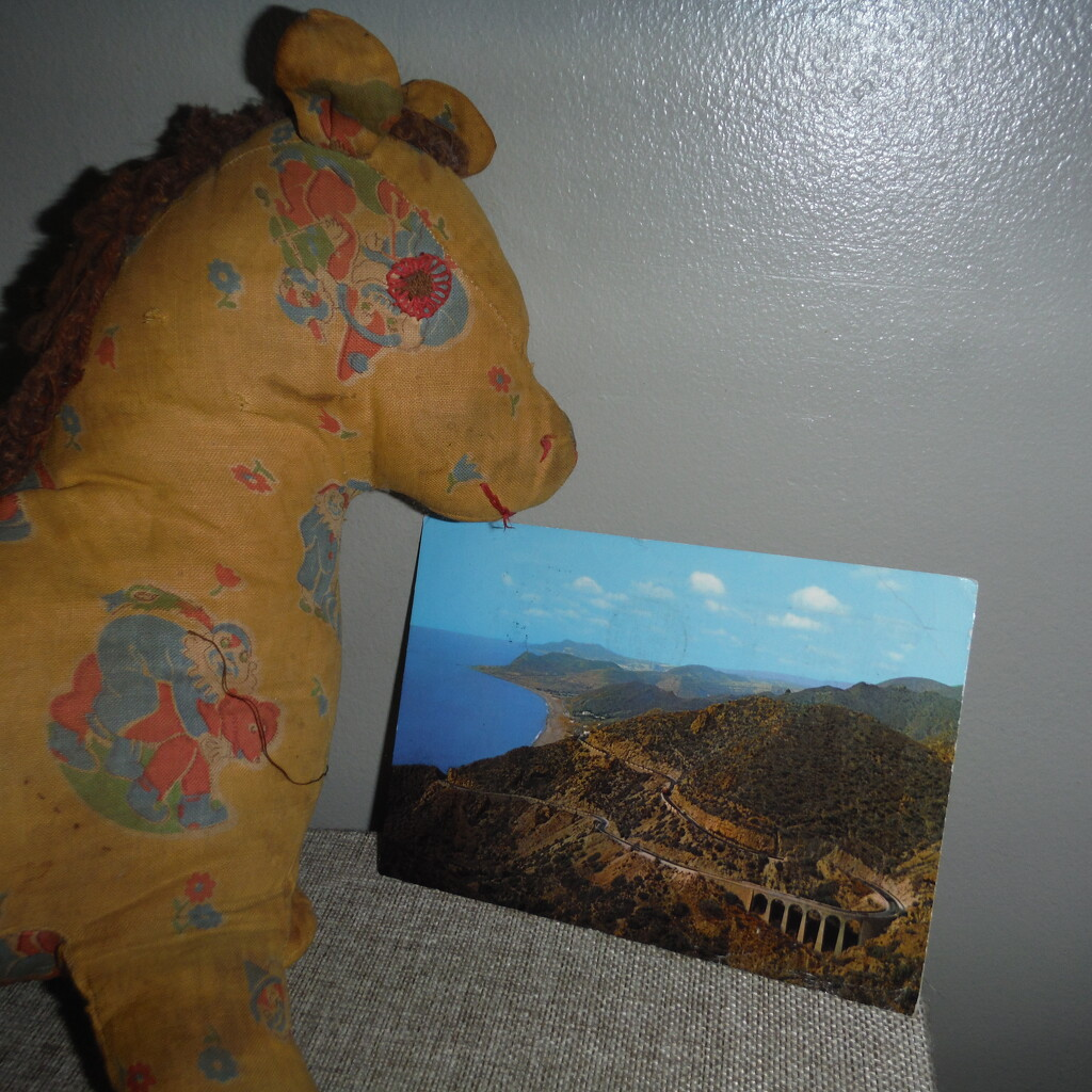 Horse/Shore by spanishliz
