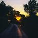 Late Evening Sun