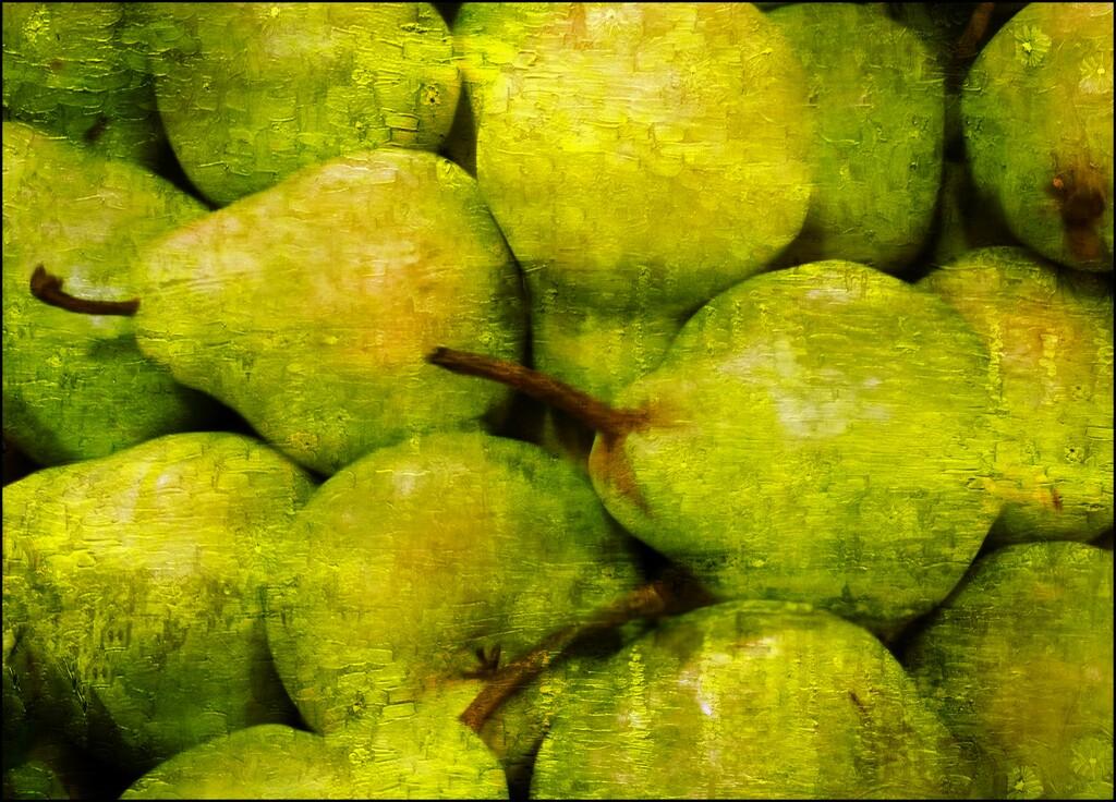 Pears by olivetreeann