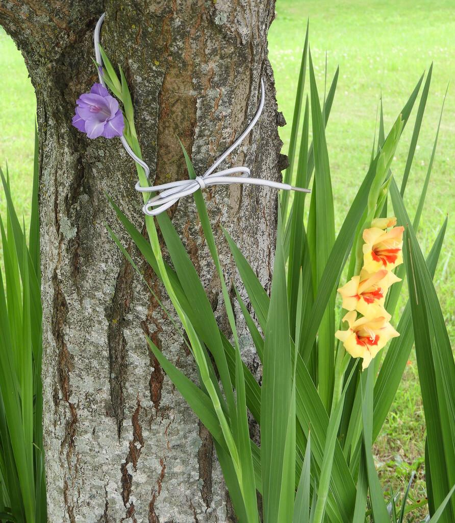 A little flower support by homeschoolmom