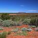 Look - There's Uluru!!!