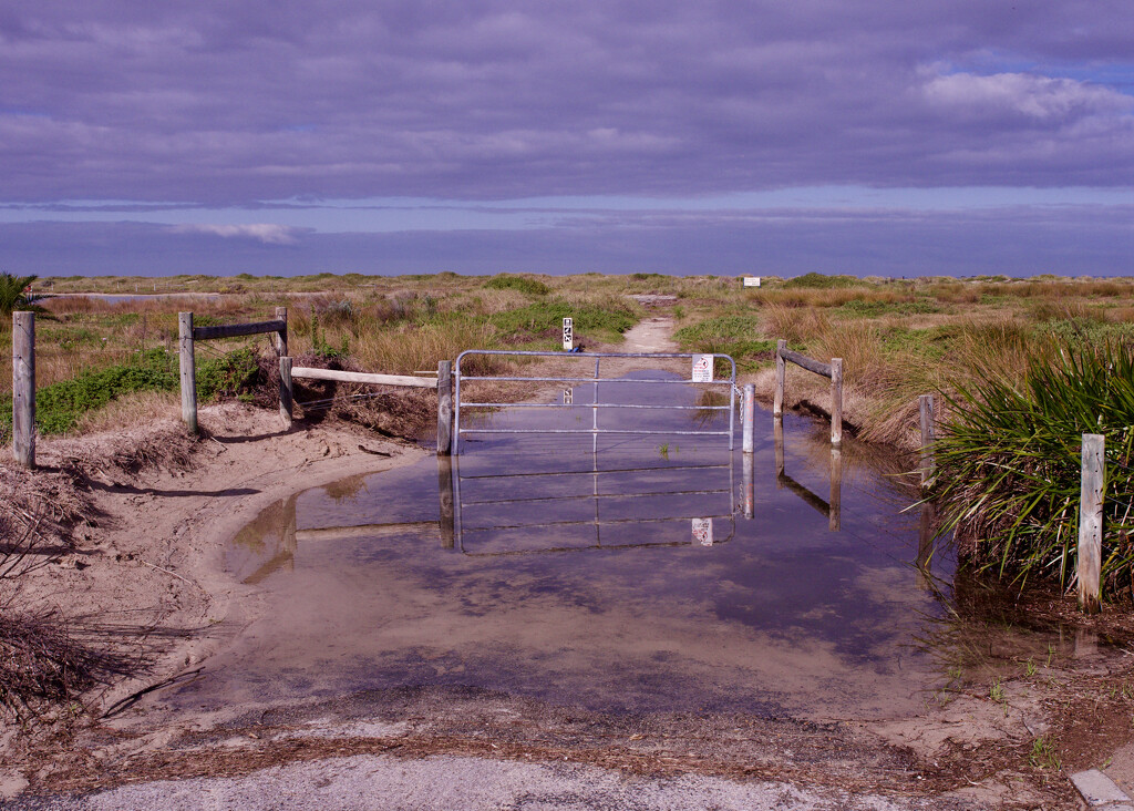 Limited Beach Access Down This Path _7220745 by merrelyn