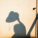 Shadowplay 1
