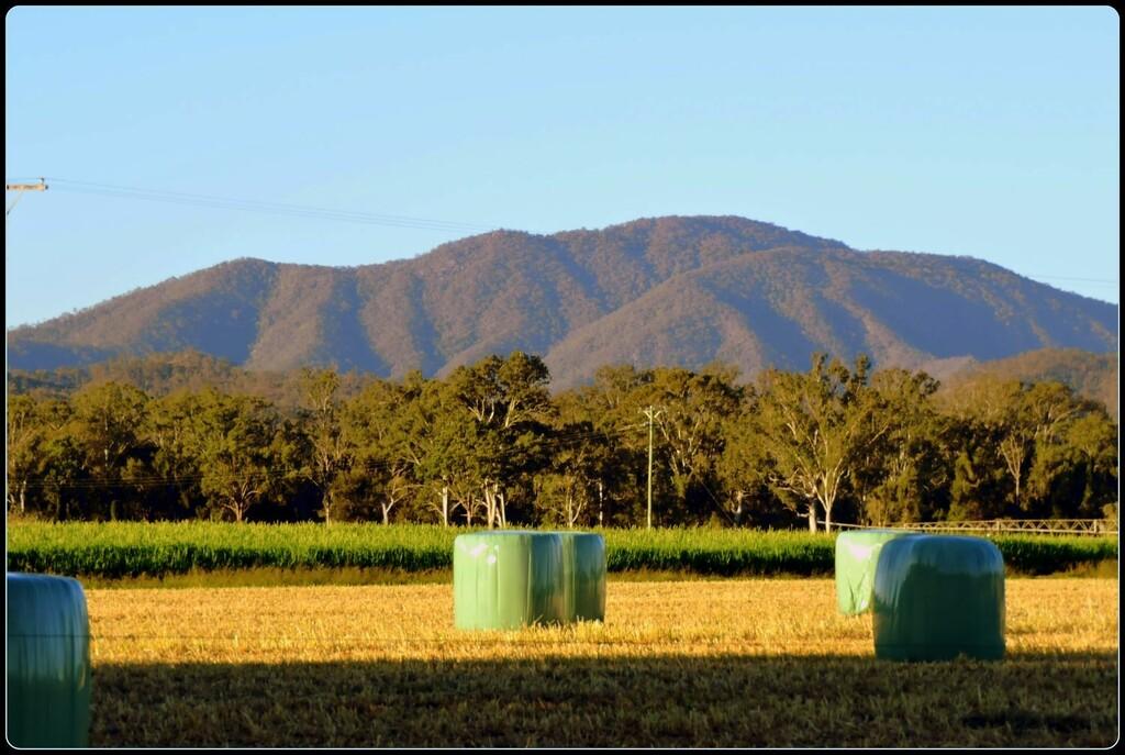 Farmland at Sunset by ubobohobo