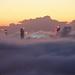 Foggy Brisbane Morning  - 2 by terryliv