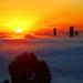 Foggy Brisbane Sunrise - 2 by terryliv