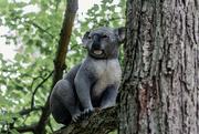 20th Jul 2021 - Plastic Koala