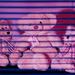 3 little bears Get-Pushed Challenge - D.I.Y. Filters