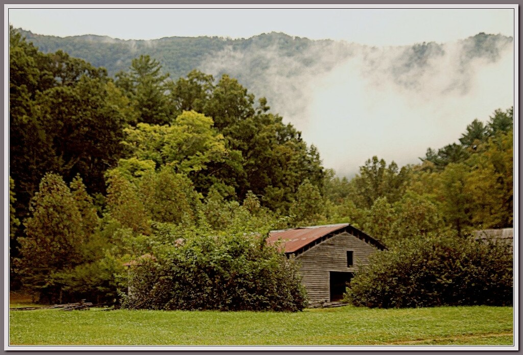 Foggy day in the mountains. by vernabeth