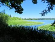 26th Jul 2021 - Green Lake