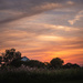 old barns, wildflowers and sunsets