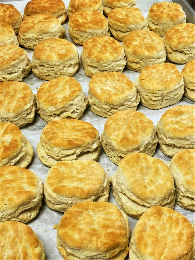 Biscuits by peggysirk