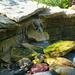 Children's garden Fountain