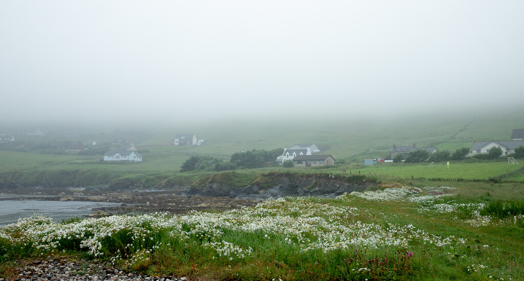 Misty Hoswick by lifeat60degrees