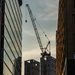 crane at golden hour