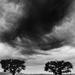 2021-07-27 dark clouds