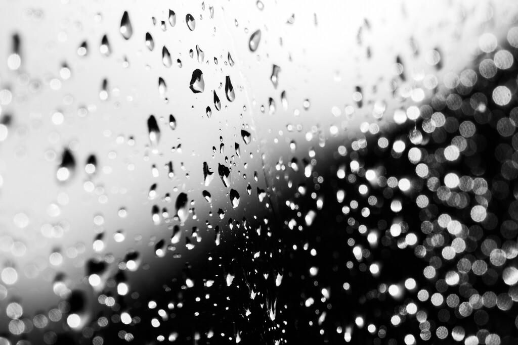 Rain by humphreyhippo