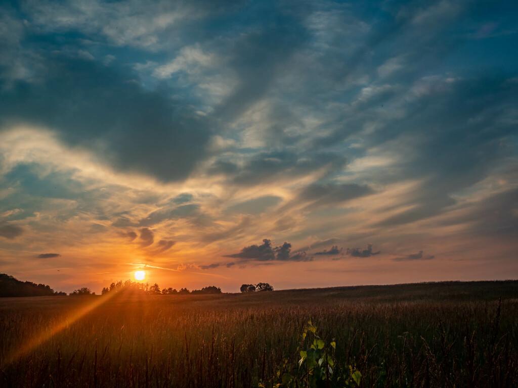 The last rays of the sun  by haskar
