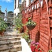 'New' garden area......