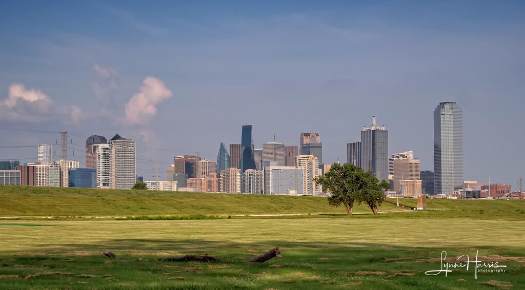 Dallas Skyline (Partially) by lynne5477